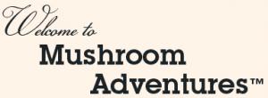 mushroom adventures Promo Codes